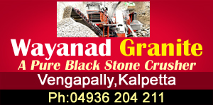 Testwayanad granite